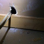 rat entry in home in dahlonega